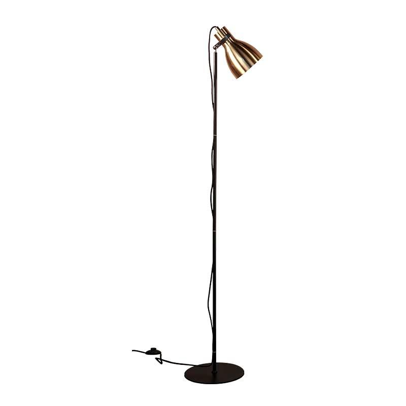 Contemporary Decoration Brushed Iron Floor Lamp for Living Room M30042