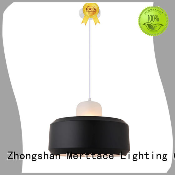 special shaped modern pendant lamp customized for indoor decoration