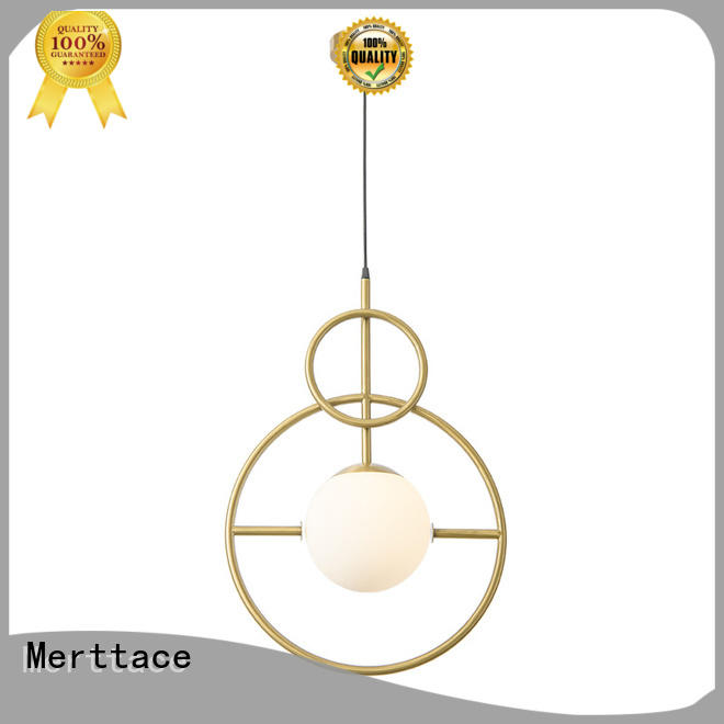 hanging pendant lamp customized for living room